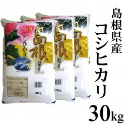 送料無料【在庫処分特価】令和2年産 島根県産コシヒカリ30kg(10kg×3) ※