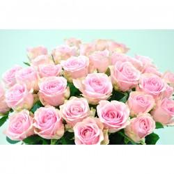 品種おまかせ ピンクのバラの花束 10本3,000円から