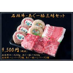 石垣牛・あぐー豚三昧セット