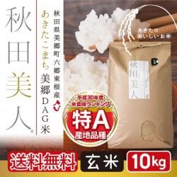 あきたこまち美郷DAG米「秋田美人」 玄米 10kg 特A 一等米 常温定湿乾燥 秋田県産  減農薬 送料無料