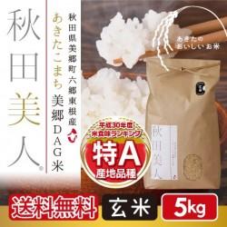 あきたこまち美郷DAG米「秋田美人」 玄米 5kg 特A 一等米 常温定湿乾燥 秋田県産  減農薬 送料無料