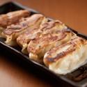沖縄県産豚パイナップルポーク冷凍ぎょうざ【20ヶ入×1セット】
