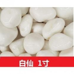 まとめ買いお得 〈白仙〉最高級グレード 庭 防草 防犯 玉砂利 1寸(30mm〜40mm)20kg
